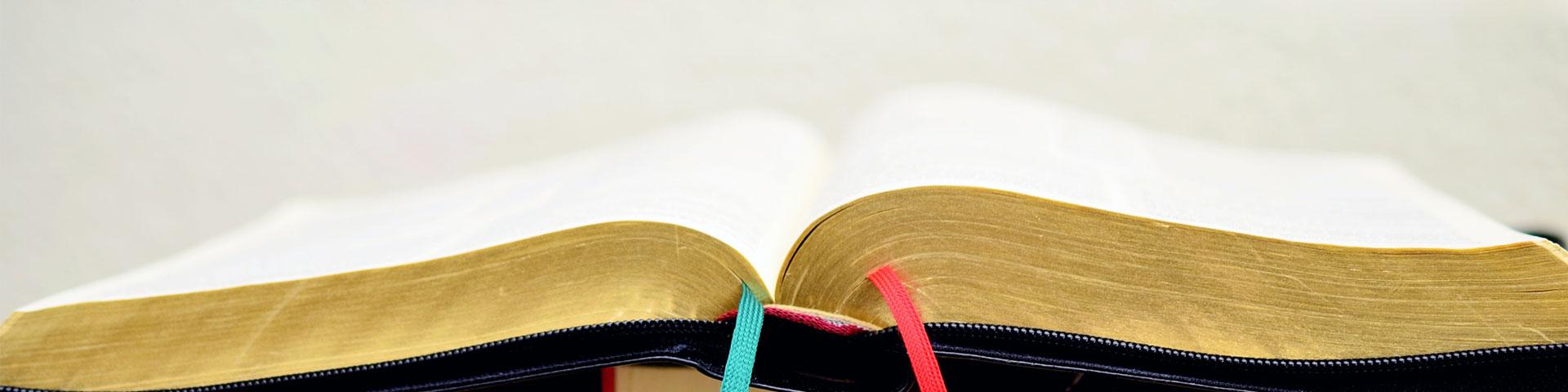 Das Superbuch - Entdecke die Bibel