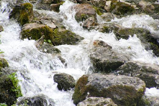 Lebendiges Wasser!